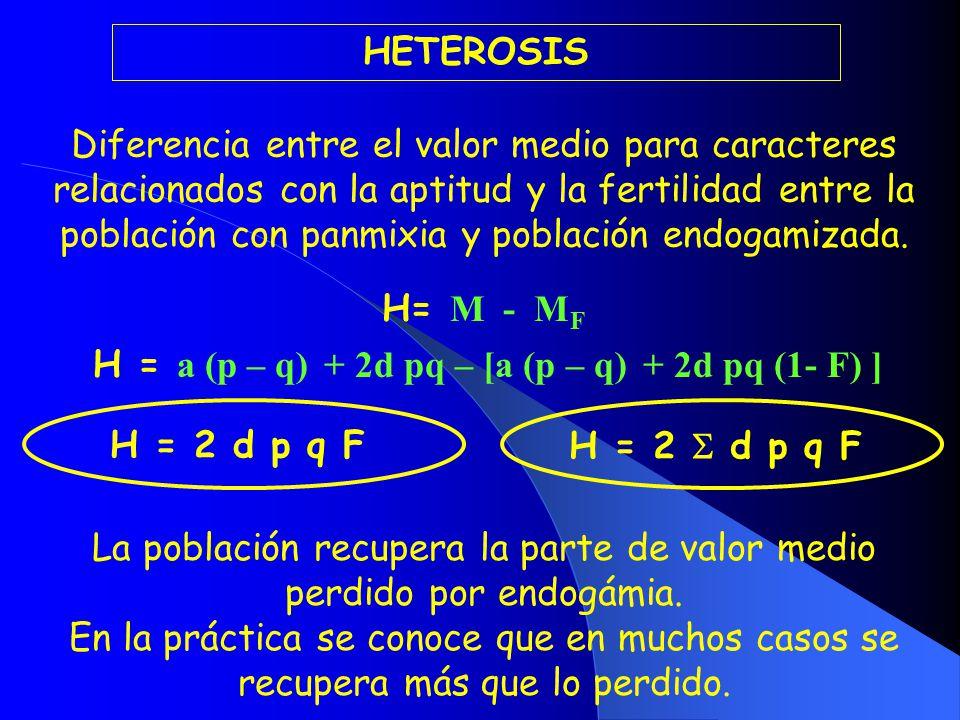H = a (p – q) + 2d pq – [a (p – q) + 2d pq (1- F) ]